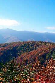 Smoky Mountains W182 x H275